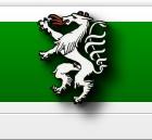 Erster Steirischer Trebervertrieb - Emblem